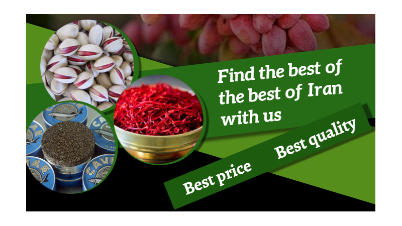 Find the best of the best of Iran with us